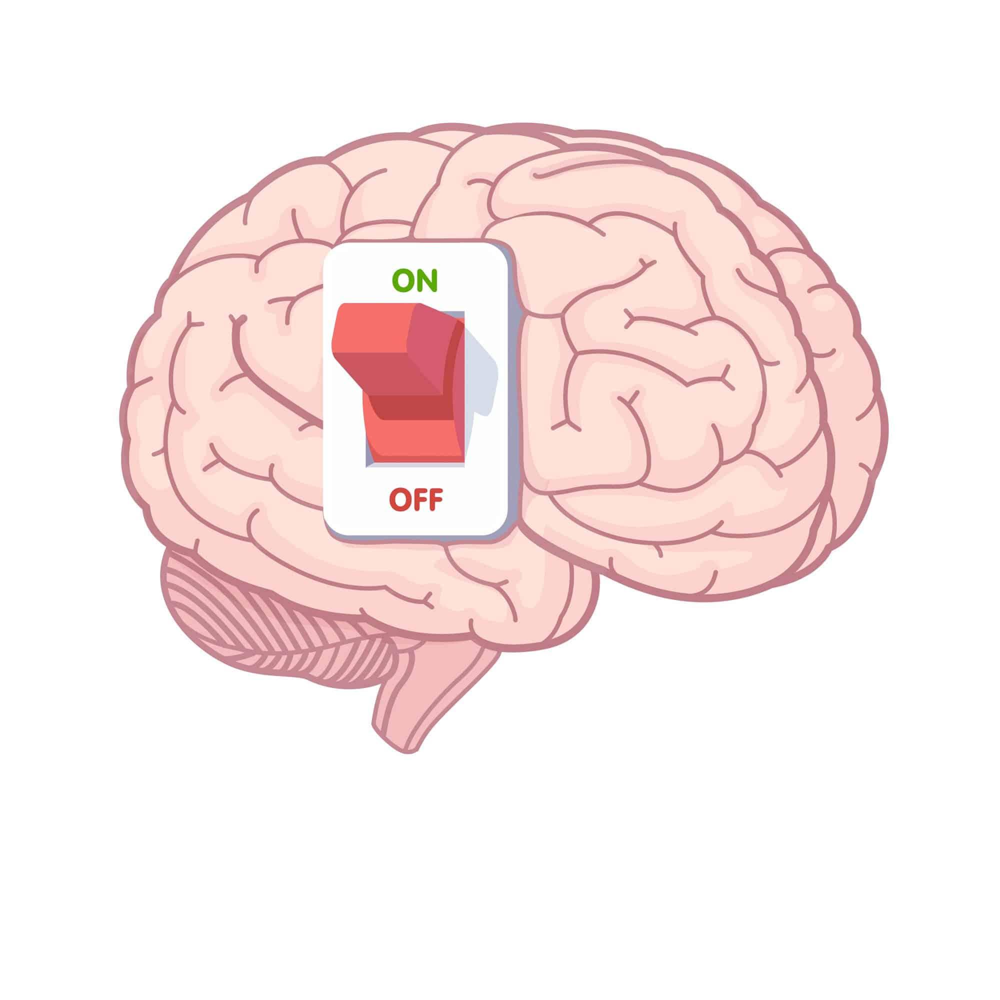 spegnere e accendere il cervello